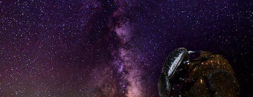 La Via Lattea e lo Stercorario.