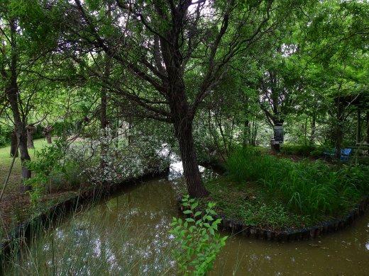 Uno scorcio del parco giardini