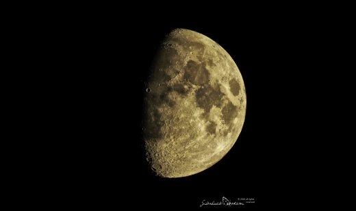 La luce della luna influisce sulla navigazione di molti insetti