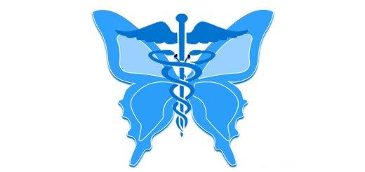 insetti e medicina