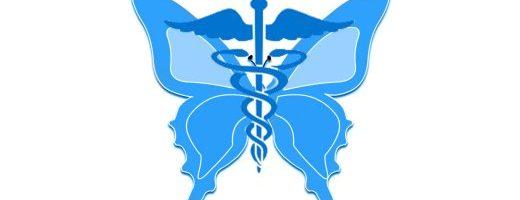 Entomoterapia, o l'uso medicinale degli insetti