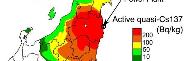 Dopo il disastro di Fukushima: rilevamenti sugli insetti